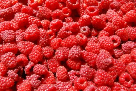 Raspberries-raspberries-35243775-3872-2592